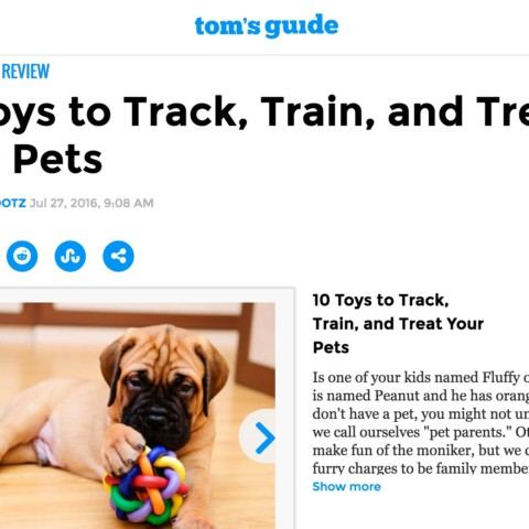 10 Toys to Track, Train, and Treat Your Pets