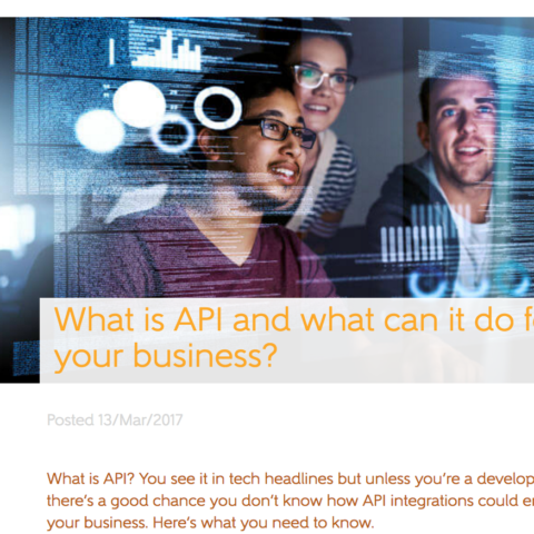 What is API and what can it do for your business?